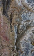One of the few pictographs you will see on the canyon wall.
