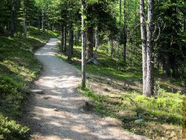 The trails incline lessens as you get closer to Larch Valley.
