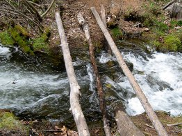 The awesome makeshift bridge.