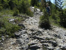 Most of the trail looks like this, a combination of rock and dirt.