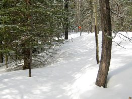 You can quickly jump off the main trail and join the snowshoe trail that starts on the right hand side.