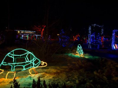 attractions/calgary-zoolights/calgary-zoolights-10.jpg