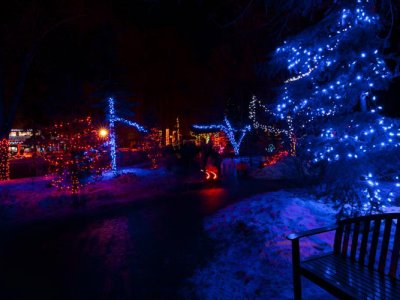 attractions/calgary-zoolights/calgary-zoolights-12.jpg