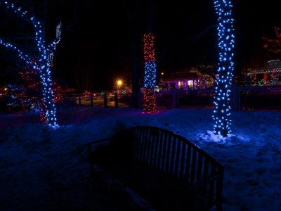 attractions/calgary-zoolights/calgary-zoolights-13.jpg