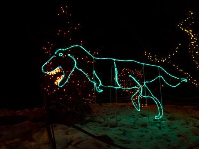 attractions/calgary-zoolights/calgary-zoolights-15.jpg