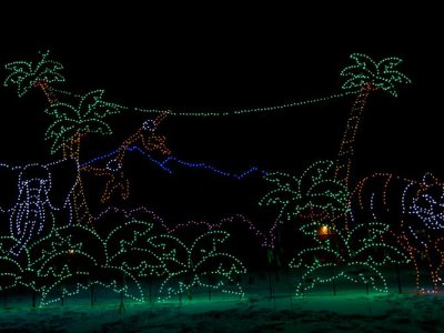 attractions/calgary-zoolights/calgary-zoolights-20.jpg