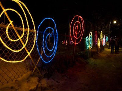 attractions/calgary-zoolights/calgary-zoolights-7.jpg