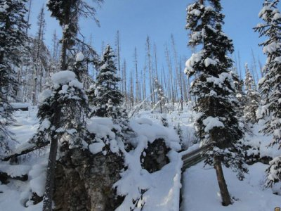 attractions/discover-banff-tours-marble-canyon/marble-canyon-1.jpg
