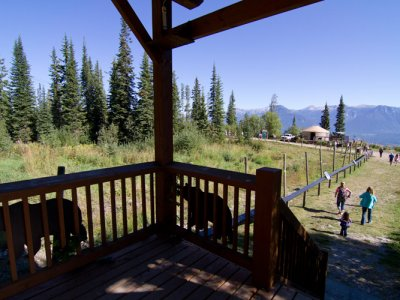 attractions/grizzly-bear-refuge-kicking-horse-resort/golden-adventure-106.jpg