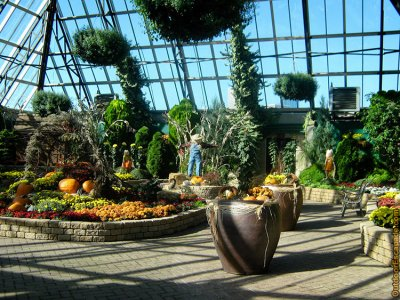 attractions/muttart-conservatory/muttart-conservatory-10.jpg