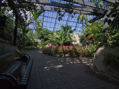 attractions/muttart-conservatory/muttart-conservatory-2.jpg