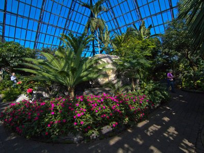 attractions/muttart-conservatory/muttart-conservatory-3.jpg