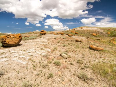 attractions/red-rock-coulee/southern-alberta-58.jpg