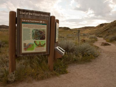 hiking/trail-of-the-fossil-hunters/trail-of-the-fossil-hunters-1.jpg